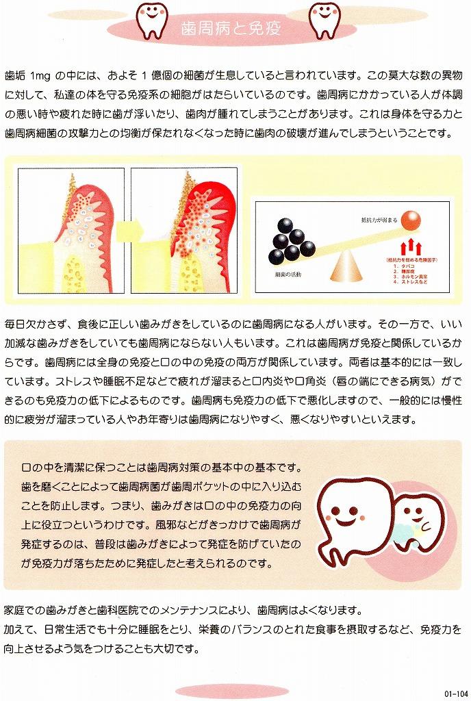歯周病と免疫